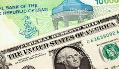 پلیمر؛ راهکاری برای تبدیل تومان به دلار/شکست