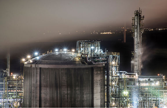 Japan's Sumitomo Chemical to cut petchem investment.