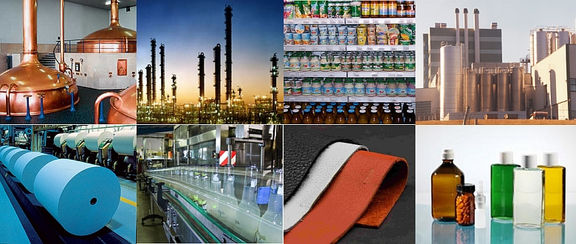 Iran petrochemicals value.